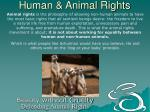 human animal rights6
