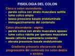 fisiologia del colon