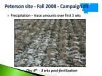 peterson site fall 2008 campaign 327
