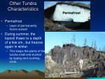 other tundra characteristics