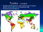 tundra location