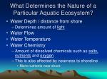 what determines the nature of a particular aquatic ecosystem