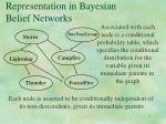representation in bayesian belief networks