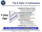 fly fight in cyberspace