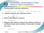 classification oriented sparse coding model for pattern classification23