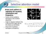selective attention model38