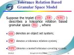 tolerance relation based granular space model