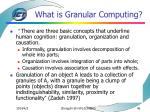 what is granular computing