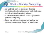 what is granular computing47