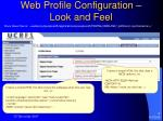web profile configuration look and feel
