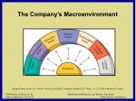 the company s macroenvironment