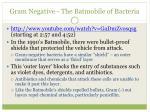 gram negative the batmobile of bacteria
