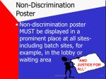 non discrimination poster