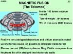 magnetic fusion the tokamak