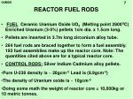 reactor fuel rods
