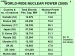 world wide nuclear power 2009