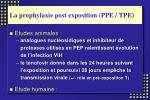 la prophylaxie post exposition ppe tpe
