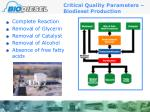 critical quality parameters biodiesel production