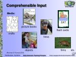 comprehensible input8