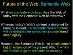 future of the web semantic web