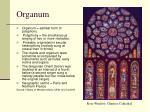 organum