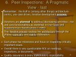 6 peer inspections a pragmatic view last