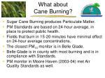 what about cane burning