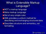 what is extensible markup language
