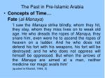 the past in pre islamic arabia9