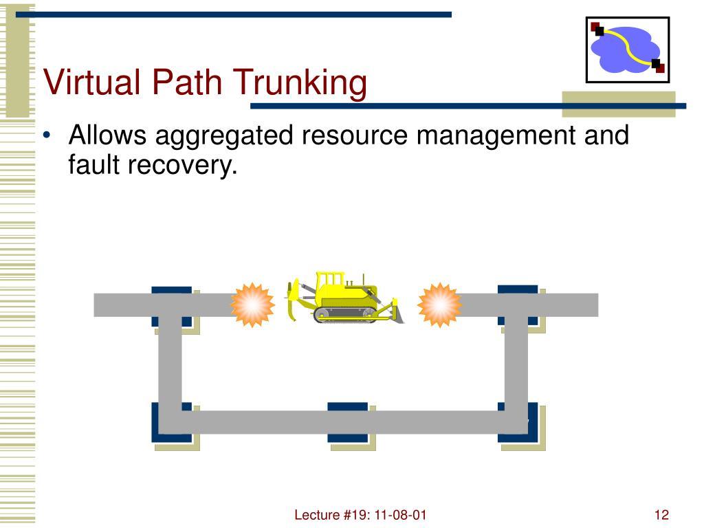 Virtual Path Trunking