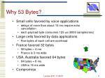 why 53 bytes