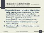 funciones ambientales tres conjuntos de funciones del medio ambiente para la econom a