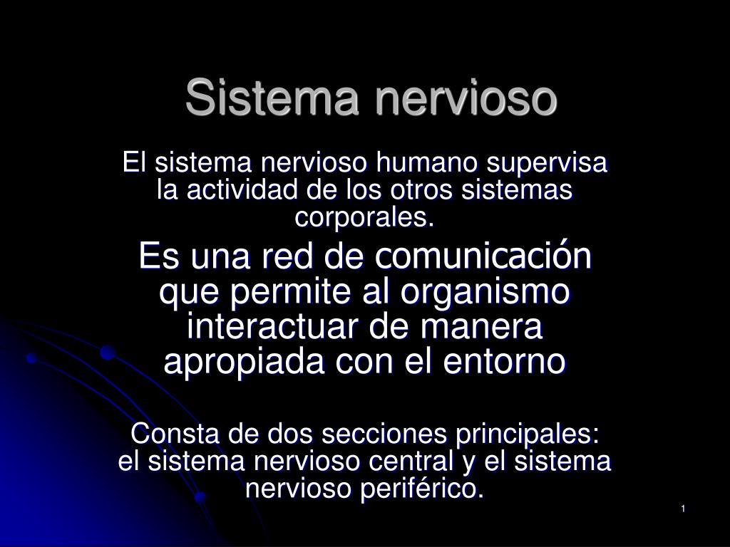 PPT - Sistema nervioso PowerPoint Presentation - ID:785203