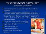 fascitis necrotizante s pyogenes y anaerobios