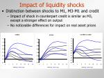 impact of liquidity shocks9
