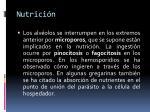 nutrici n1