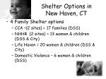 shelter options in new haven ct