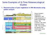 some examples of q time palaeoecological studies