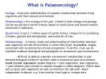 what is palaeoecology
