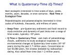 what is quaternary time q time