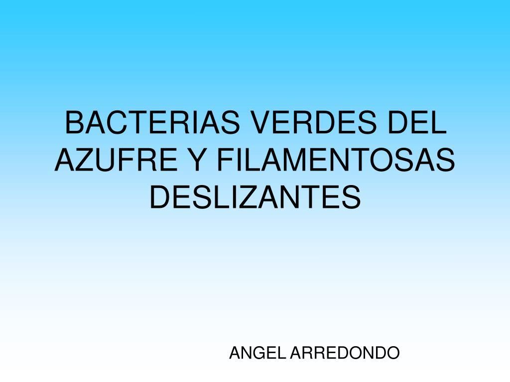 bacterias verdes del azufre y filamentosas deslizantes l.