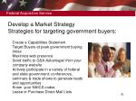 develop a market strategy strategies for targeting government buyers
