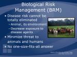 biological risk management brm3
