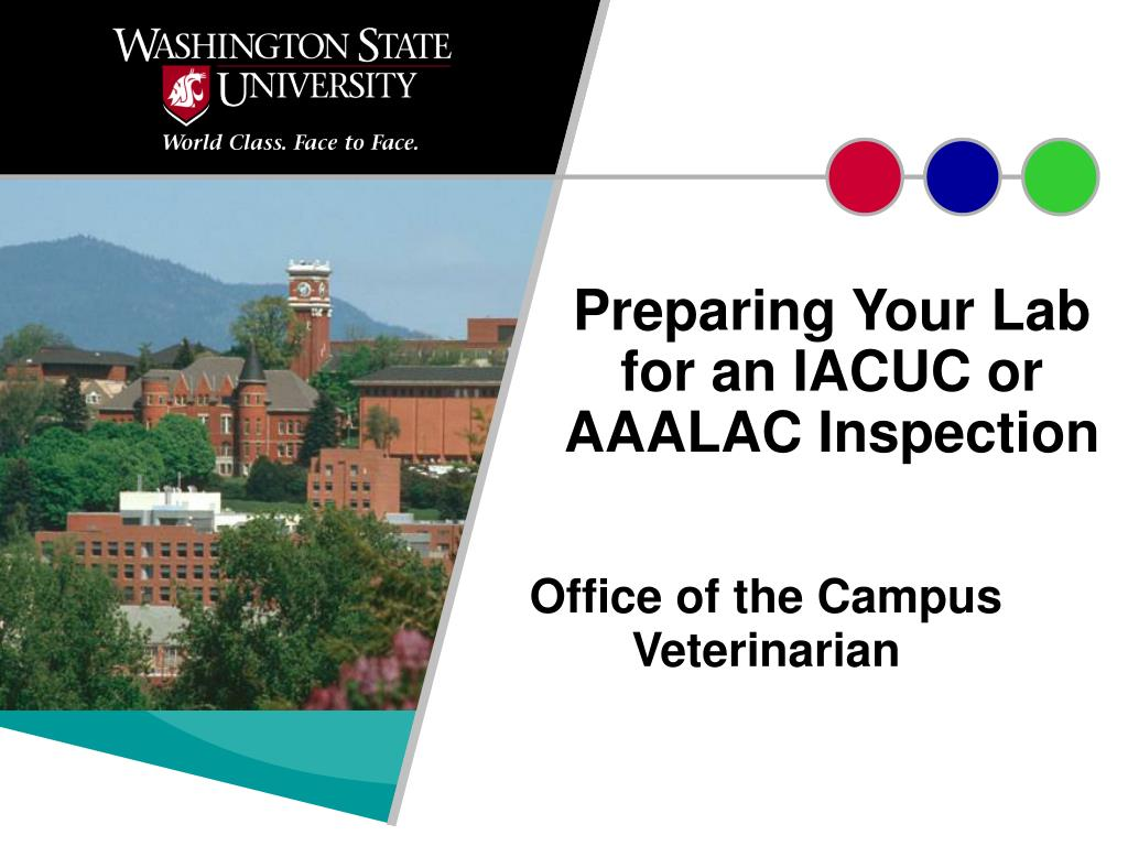 preparing your lab for an iacuc or aaalac inspection l.
