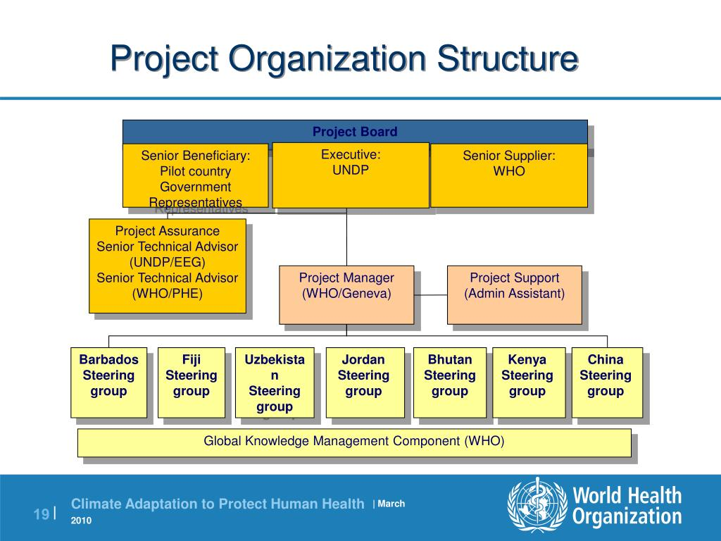 Project Organization Structure