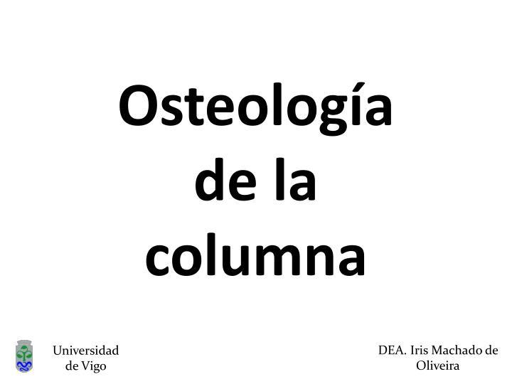 Osteología de la columna