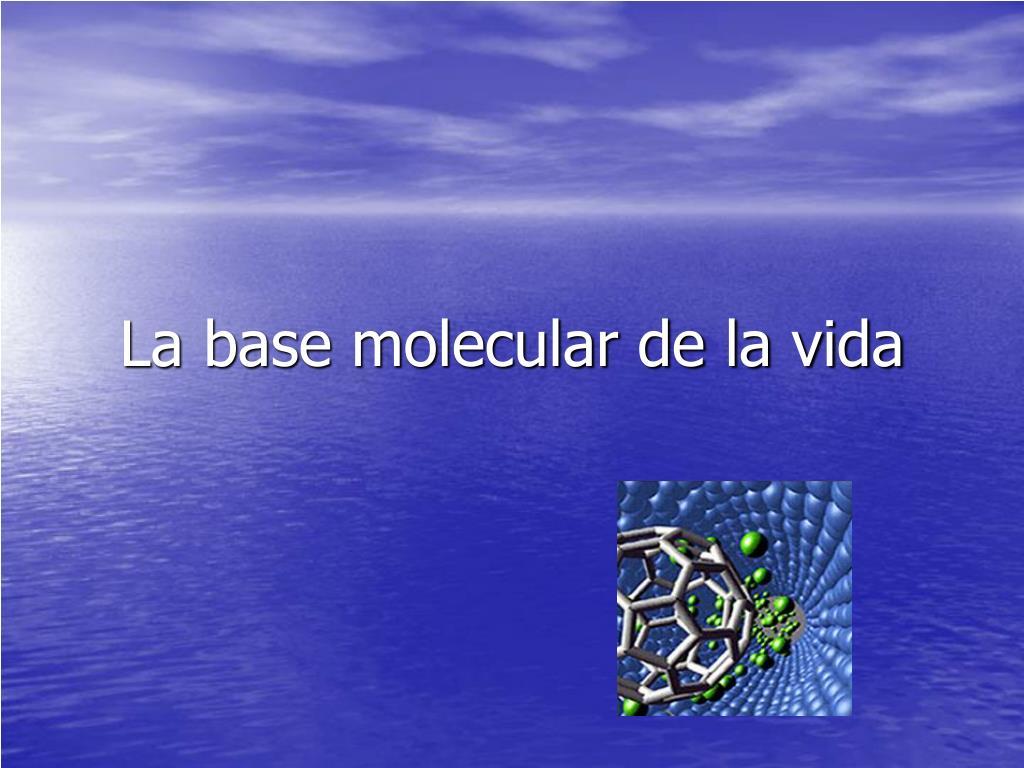 la base molecular de la vida l.