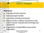 swot analysis19
