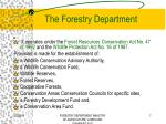 the forestry department7