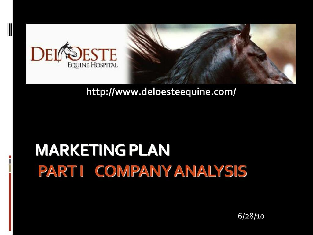 marketing plan part i company analysis l.